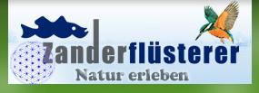 Zanderfluesterer.de - Manfred Gorgas - Zanderguide an der Elbe